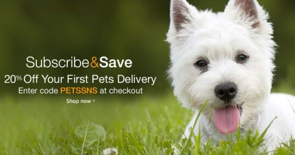 Amazon 20 Off Your 1st Pets Delivery Food Animals Pets Dog Food Online
