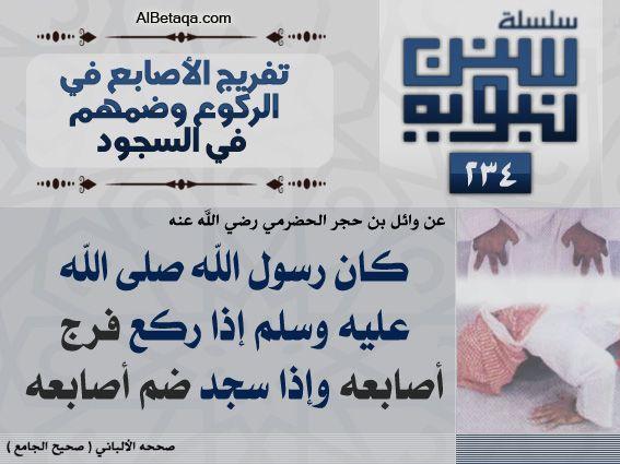 سنن نبوية تفريج الأصابع فى الركوع وضمهم فى السجود Hadeeth Ahadith Allah Quotes