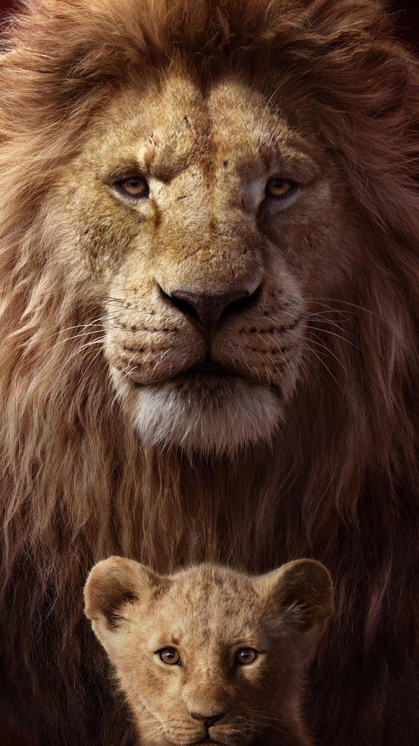 The Lion King 2019 Phone Wallpaper In 2020 The Lion King Leeuwenkoning Leeuw Fotografie
