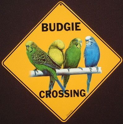 Budgie Crossing Sign Decor Birds Art Picture Parakeets Home eBay
