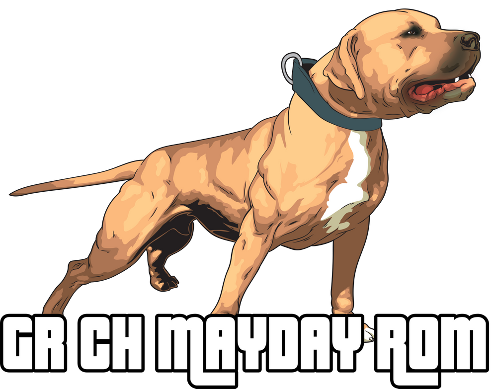 Grand Champion Mayday Rom Carry All Pouch By Gamedogs Small 6 X 5 In 2020 American Pitbull Terrier Dog Games American Pitbull