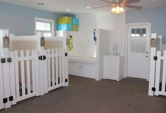 39+ A Review Of Dog Room Ideas 341