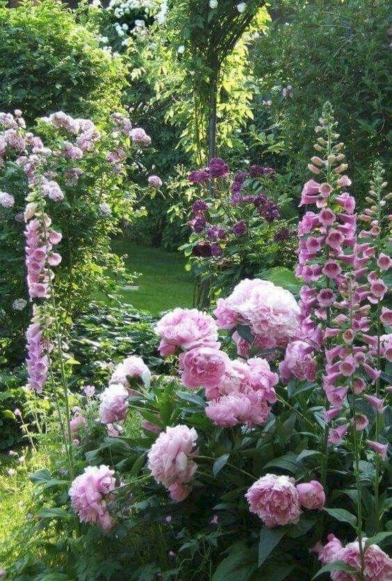 Photo of The best ideas for garden design and garden design – designing a …
