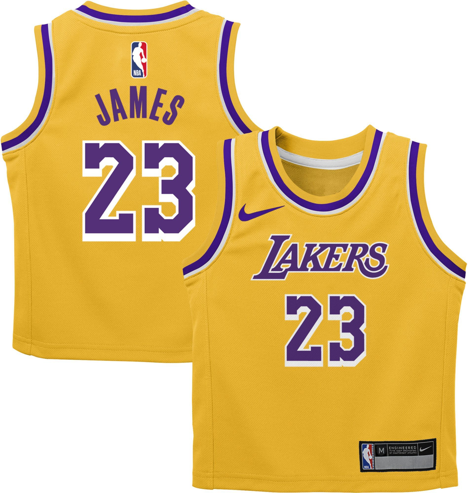best authentic aea7f 9655a Nike Toddler Los Angeles Lakers LeBron James #23 Gold Dri ...