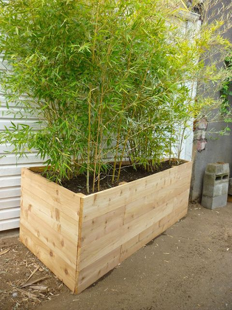 1914house: $93 Cedar Planter for Bamboo