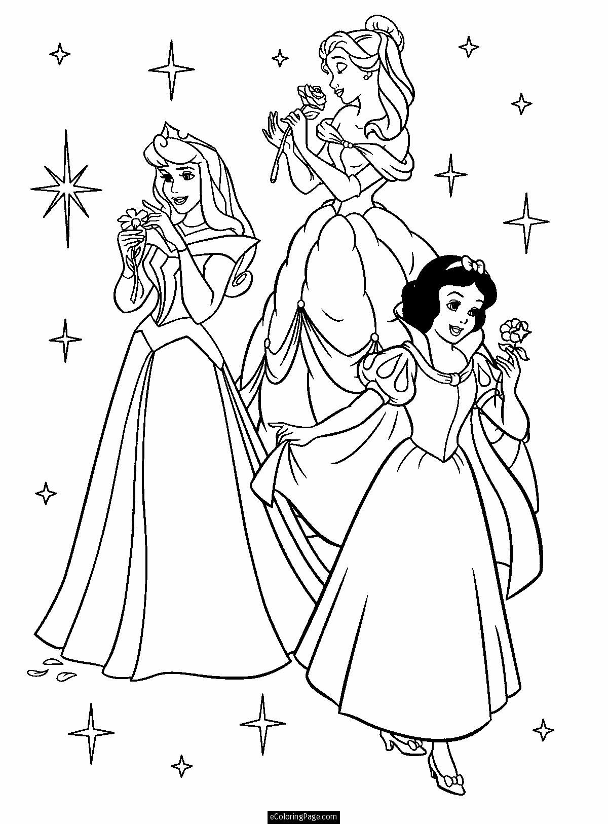 Disney Princesses Aurora Belle and Snow White with Flowers