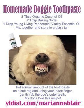 Homemade Dog Toothpaste Pet Hacks Dogs Homemade Dog