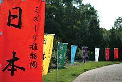 Japanese Festival Banners at the Missouri Botanical Garden
