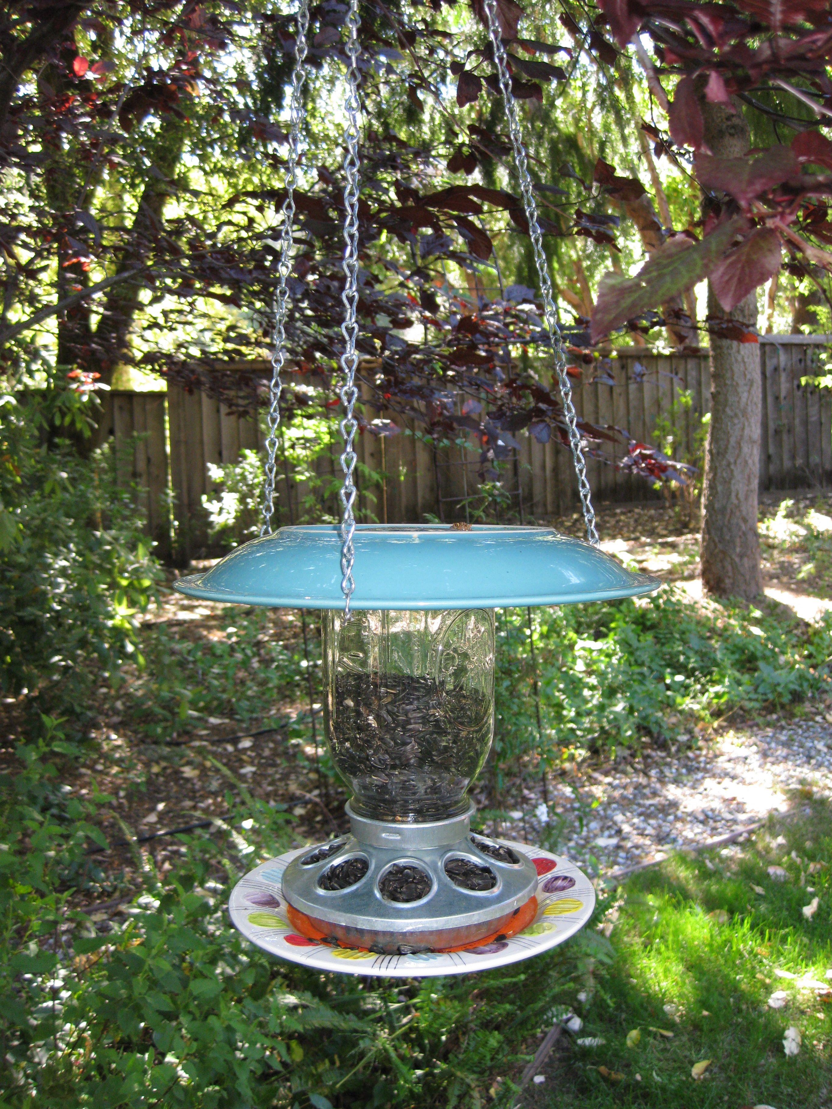 squirrel feeders bird garden greenkey home feeder