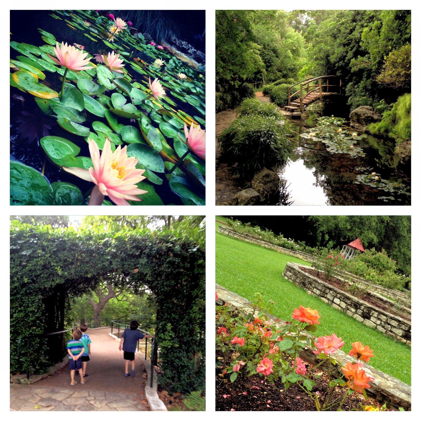 Zilker Botanical Garden Budget Friendly Outing For Families Botanical Gardens Botanical Budget Friendly