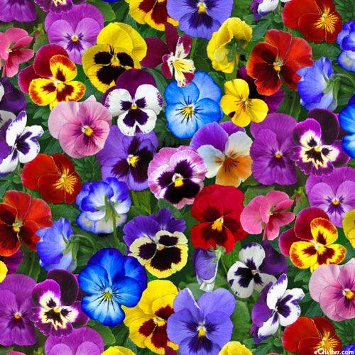 Lovely Pansies Flower Bed Gems Multi Pansies Flowers Pansies Purple Floral Fabric