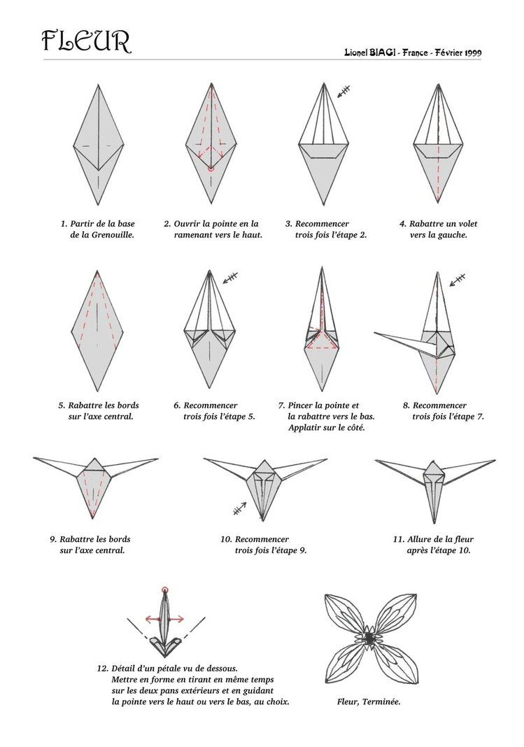 Origami Flower Diagrams Wiring Diagram For Light Switch