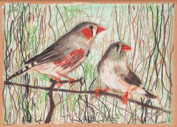 Birds branches and vines Original pastel drawing by tushtush