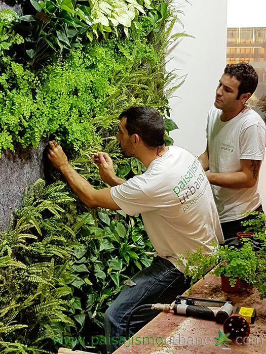 Jardines verticales interiores en Porronet Elche