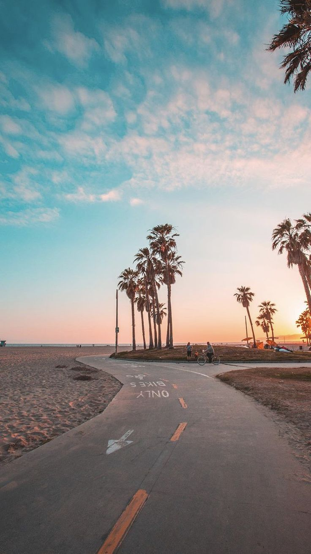 Tropical Coast Sunset California Beach Road One Way