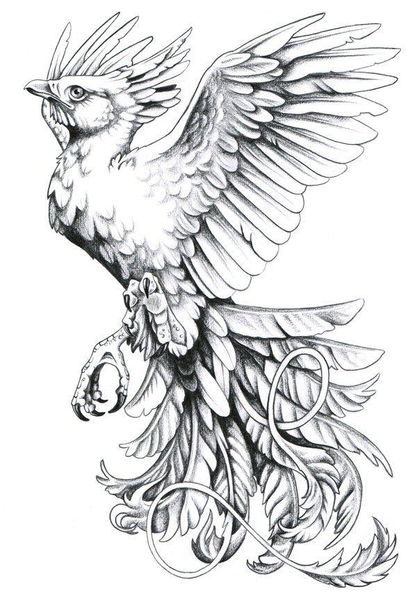 11e0fc9cacec0 phoenix tattoo- beautiful- add eyes to tail feathers | tattoo ...