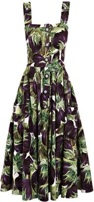 9f040ec3 ShopStyle: Dolce & Gabbana Aubergine-print fit-and-flare dress | In ...