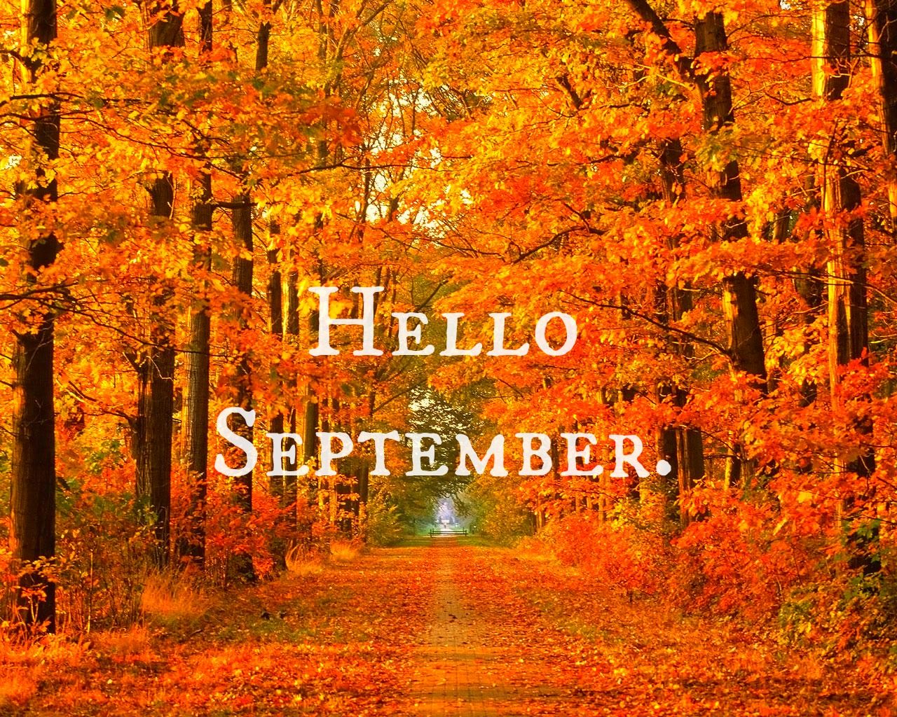 Superieur Hello September