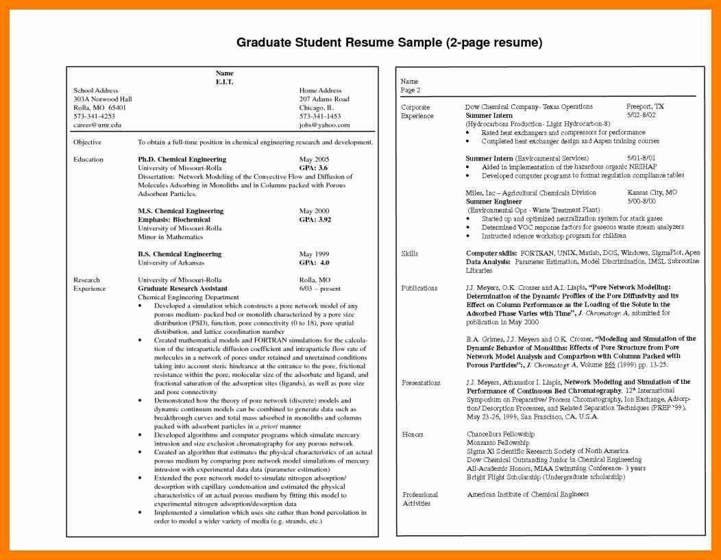 Net Developer Resume Sample Elegant Net Developer Resume Sample New Junior Sql Developer Resume