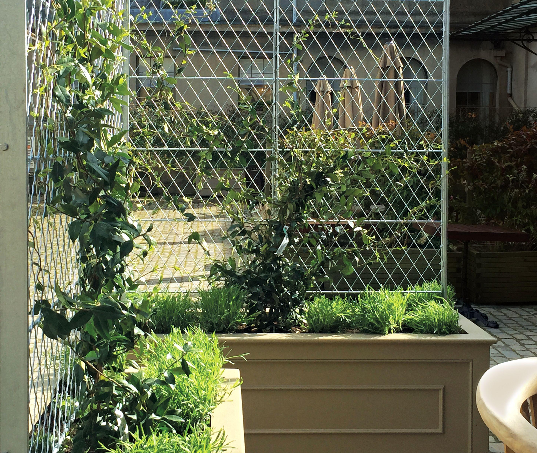 Garden Trellis Panels With Images Metal Garden Trellis Garden