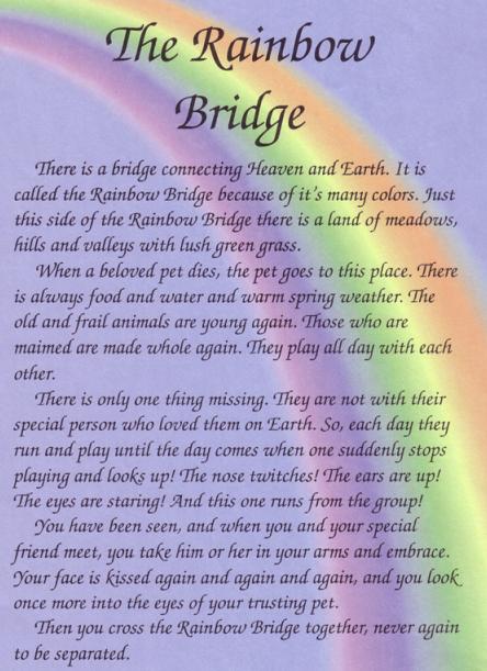 Rainbow Bridge Poem on Pinterest   Rainbow Bridge Dog ...