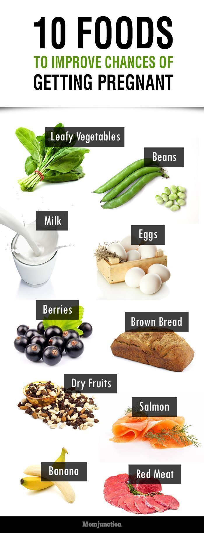 Best foods to eat for good health - 10 Best Foods To Get Pregnant Improve Pregnancy Chances Healthy Pregnancy Dietpregnancy