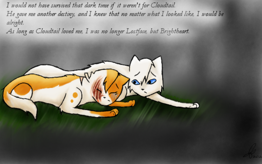 Brightheart Warrior Cat Quotes
