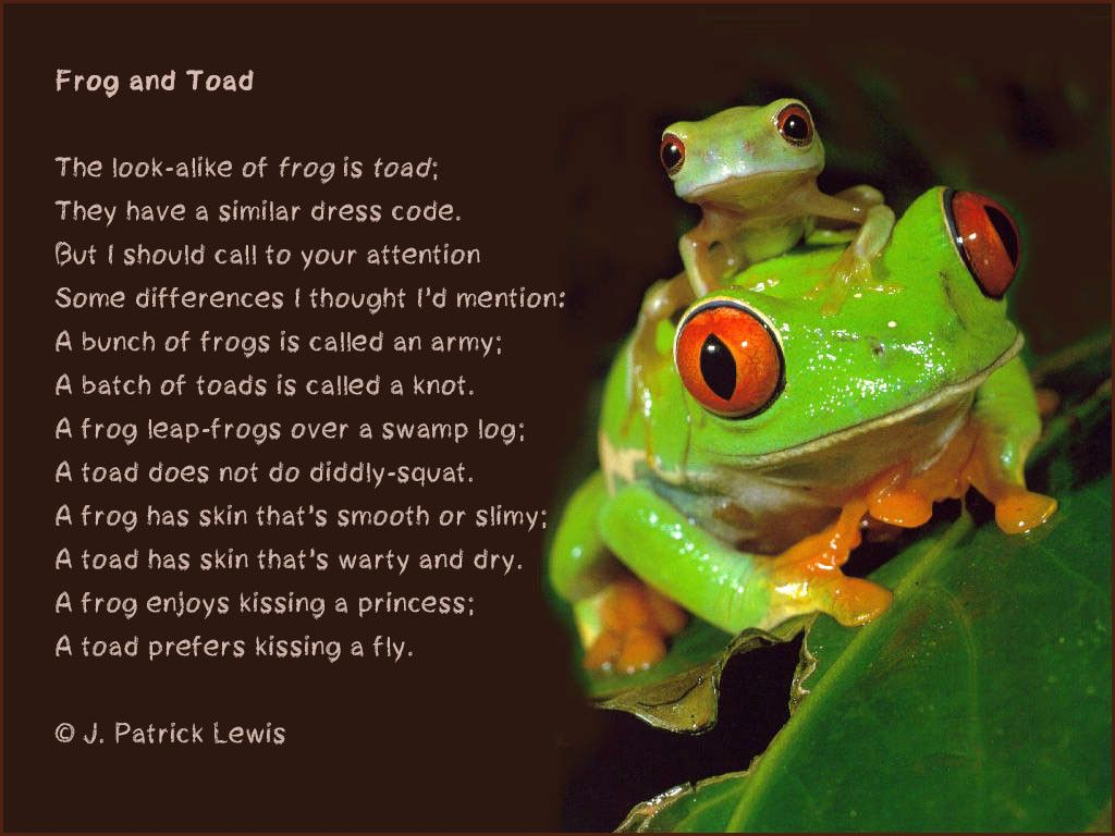 Frog and toad poem frogs pinterest toad frogs and national frog and toad poem pooptronica Gallery