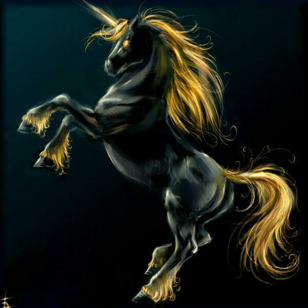Black and yellow unicorn