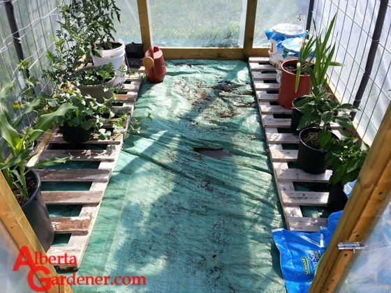Using Wood Fence Panels as Shelving in the Greenhouse - The panels really give a new look to the greenhouse floor along with adding functionality.