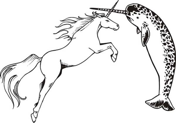 Unicorn Versus Narwhal Coloring Pages Narwhal