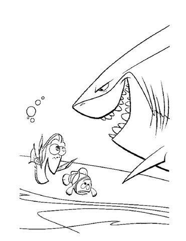 Meet The Shark Bruce Coloring page | Kid\'s Crafts | Pinterest | Dory ...
