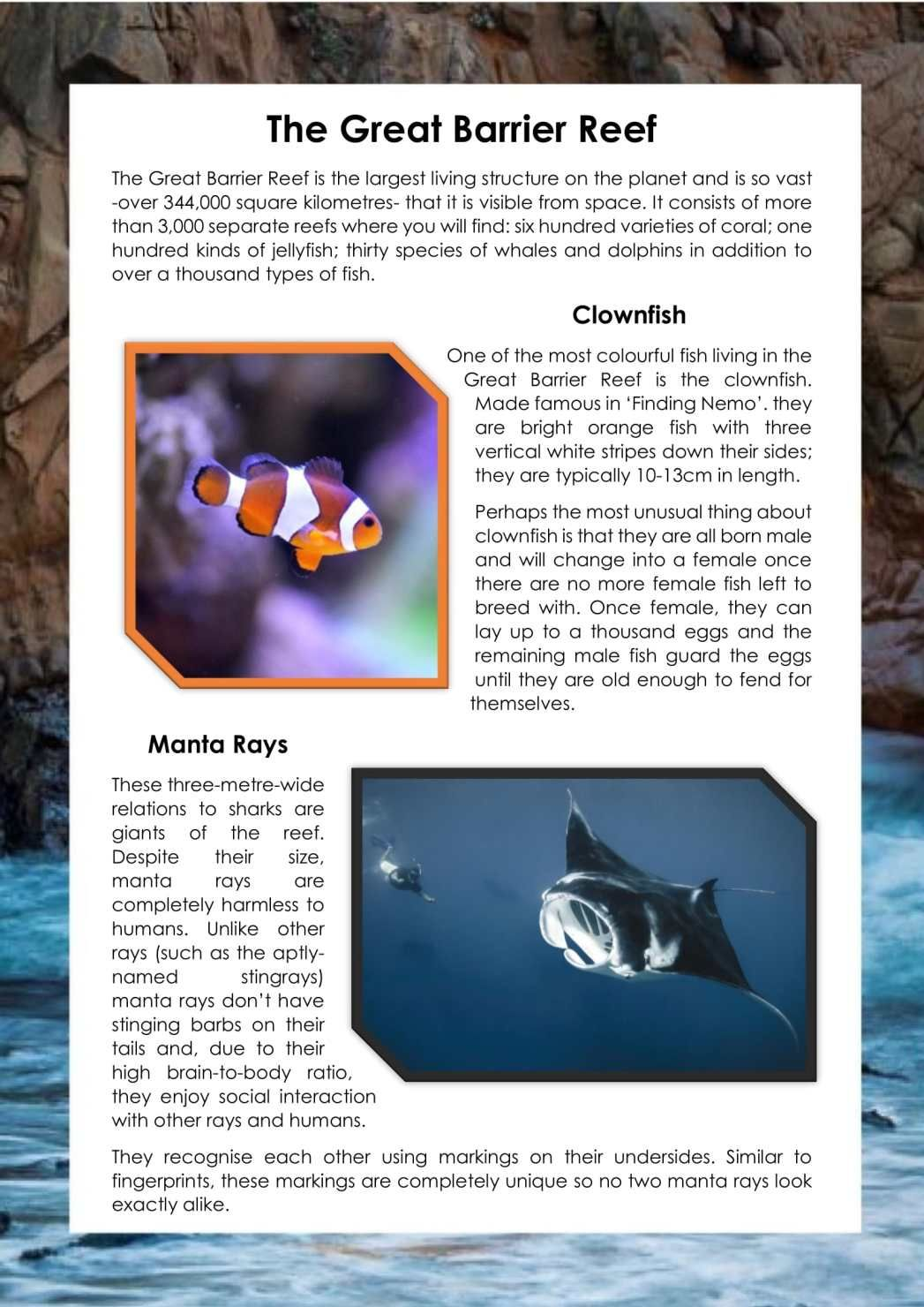 Oceans / Under the Sea / Great Barrier Reef Information