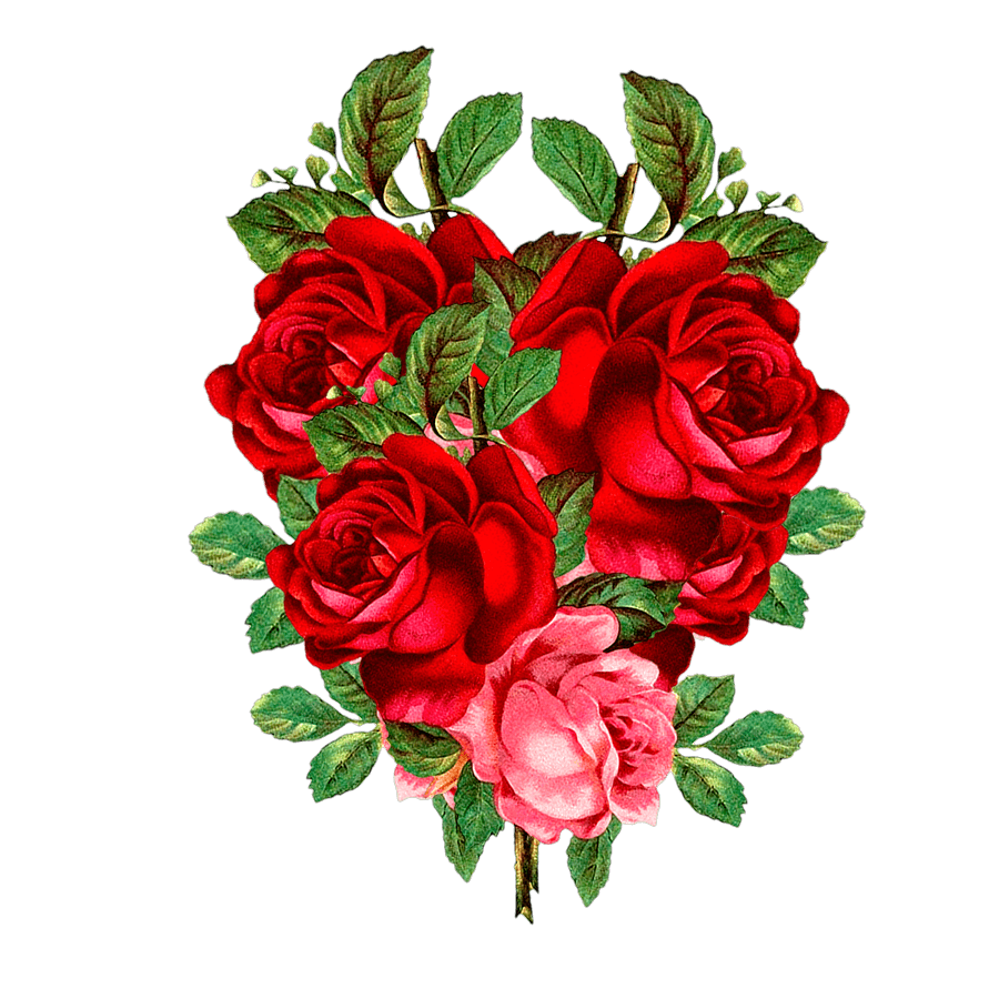 Pin By Midapaul On Painting Flower Png Images Flower Bouquet Drawing Red Flowers