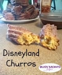 Copy Cat Disneyland Churro on MyRecipeMagic.com