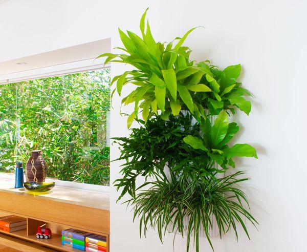 Wandgarten Selber Machen ein hingucker der das raumklima verbessert eine grüne wand aus
