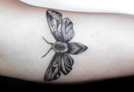Tattoo Motte Schwarz Weiss Black White Mit Bildern Motten Tattoo Tattoo Designs Tattoo Ideen