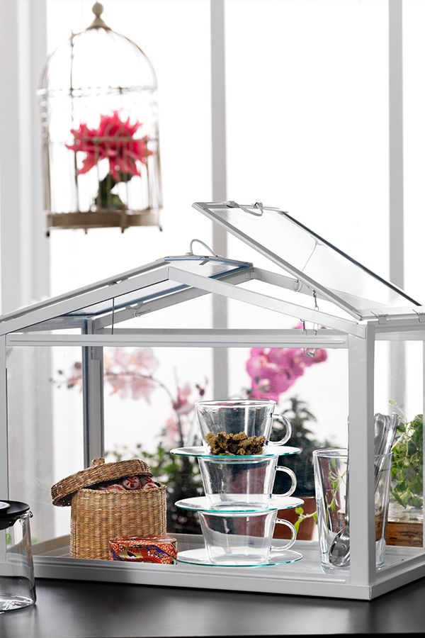 Show Off Your Green Thumb With The Socker Greenhouse