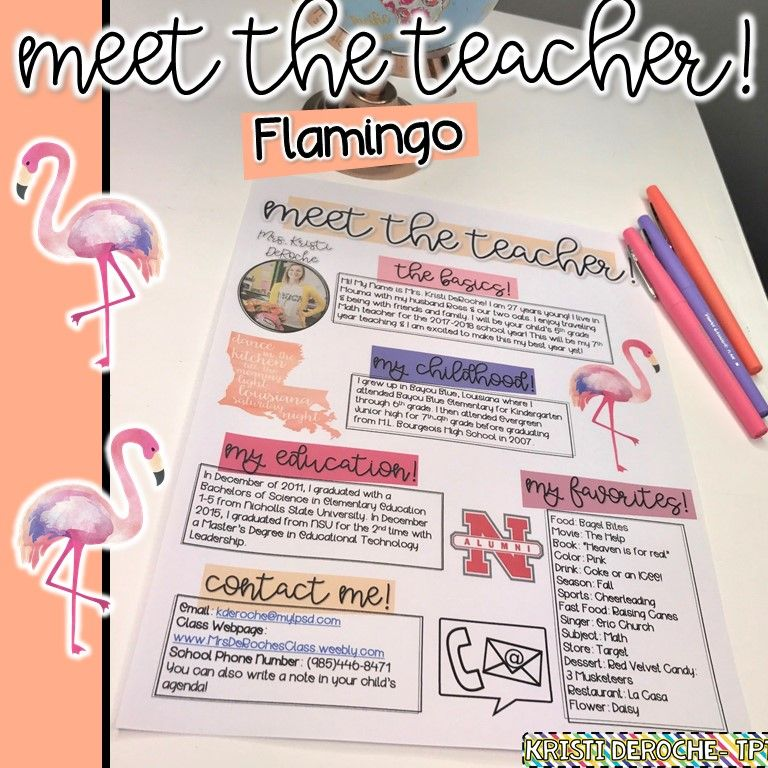 Meet The Teacher Newsletter- EDITABLE - Flamingo Teacher - open house templates