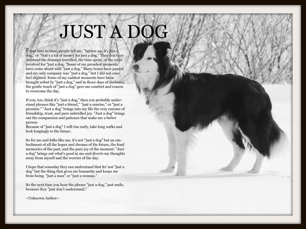 Just A Dog Poem Flickr Photo Sharing Dog Poems Dogs Dog Love