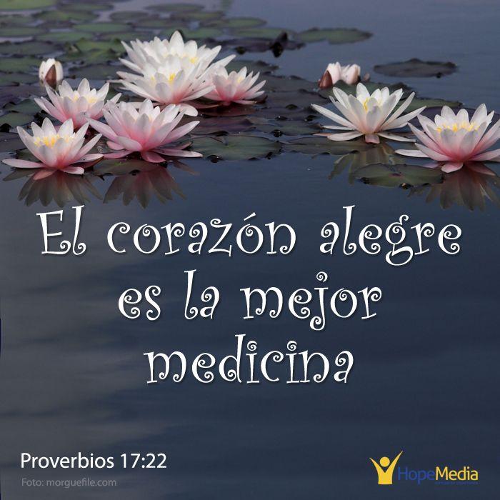 """La clave de la felicidad: """"Relacionarte con Dios y aprender a confiar en Él produce paz, gozo y Vida"""" (EAF) HopeMedia.es"""