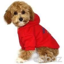 Resultado de imagen para ropa para perros