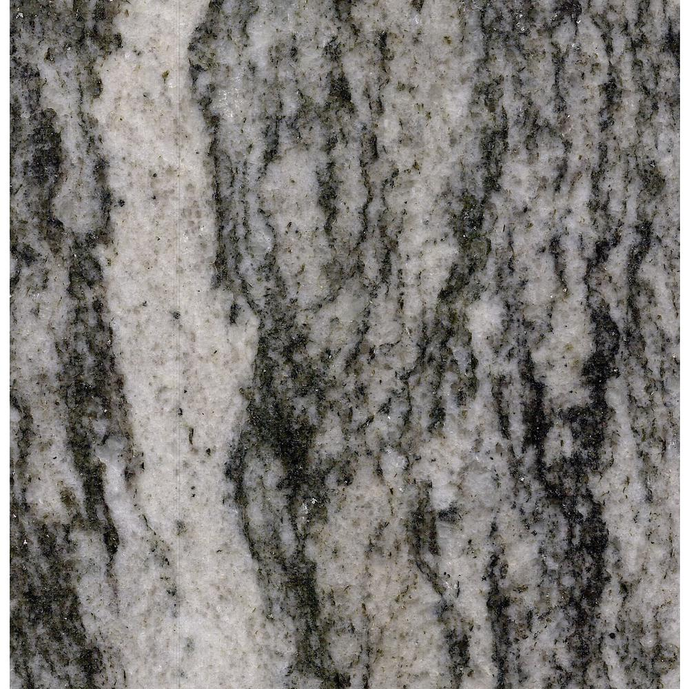 Stonemark Granite 3 In X 3 In Granite Countertop Sample In St