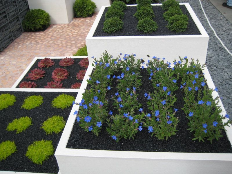 Using a dark topsoil or mulch is a sure way to keep a clean and modern. Modern Gardening   HaynetCreative com