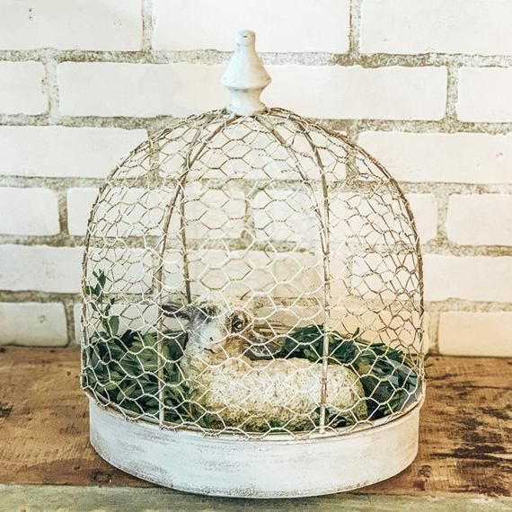 Small Bird CageArt Deco CageShabby Chic DecorFrench Style CageGarden ArchitectureFarmhouse DecorStyle HomeShabby ChicWhite Bird Cage#architecturefarmhouse #bird #cage #cageart #cagegarden #cageshabby #chic #chicwhite #deco #decorfrench #decorstyle #homeshabby #small #style