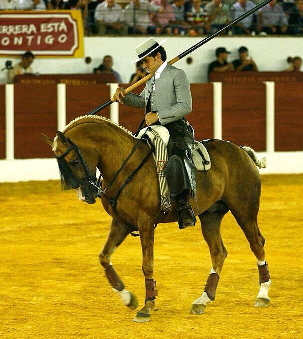 Diego Ventura Country Caballos Caballos Espaoles Y Doma