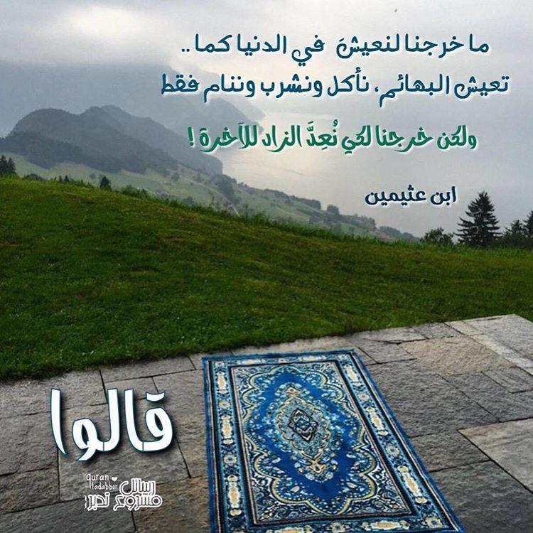 رسائل مشروع تدبر On Instagram قــــــــالوا قال ابن عثيمين رحمه الله ما خرجنا لنعيش في الد نيا كما تعيش البهائم Islam Quran Inspiration