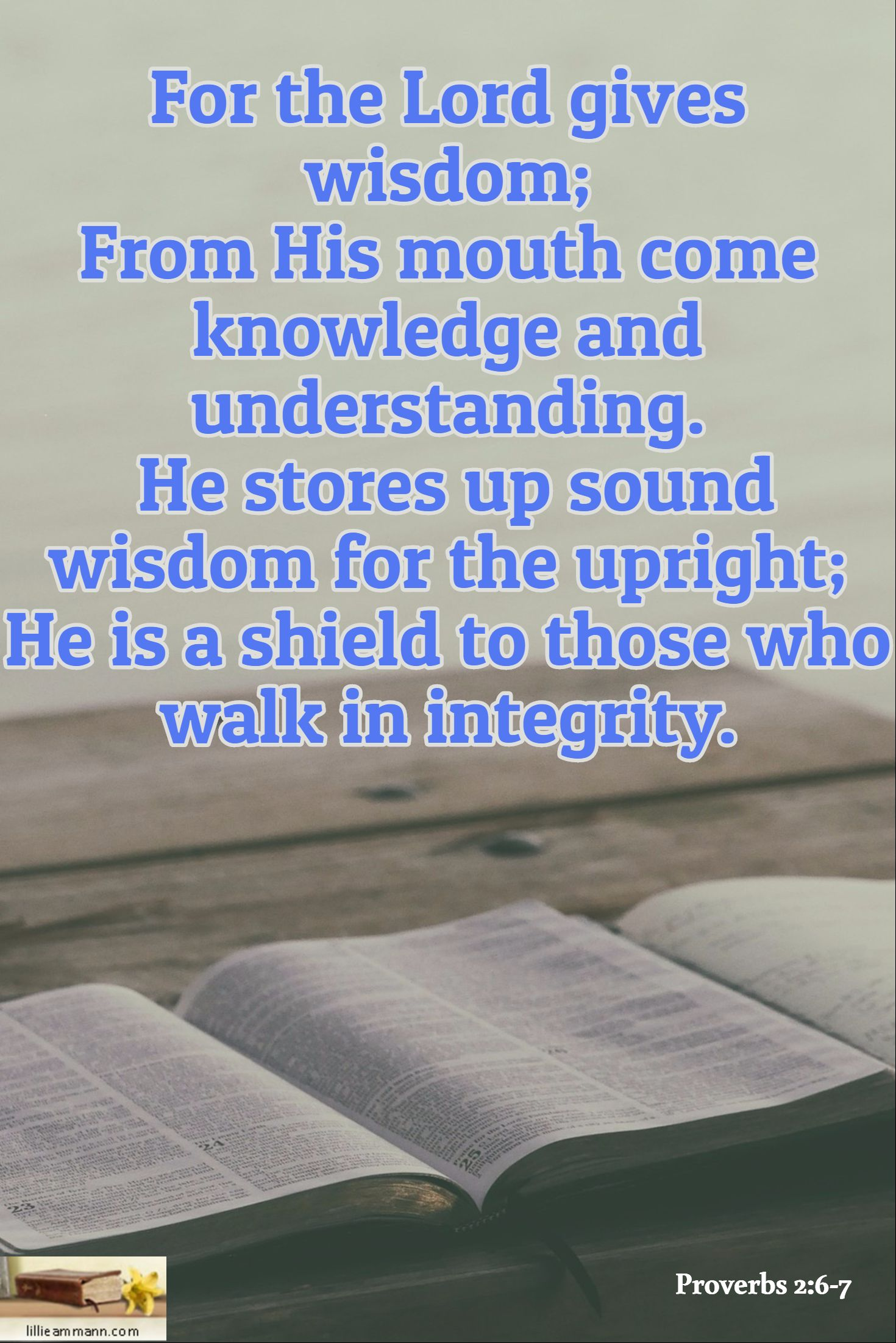 Proverbs 2:6-7 / For the Lord gives wisdom; From His mouth come knowledge  and understanding. He stores up sound wisdom for the upri… | Proverbs,  Quotations, Wisdom