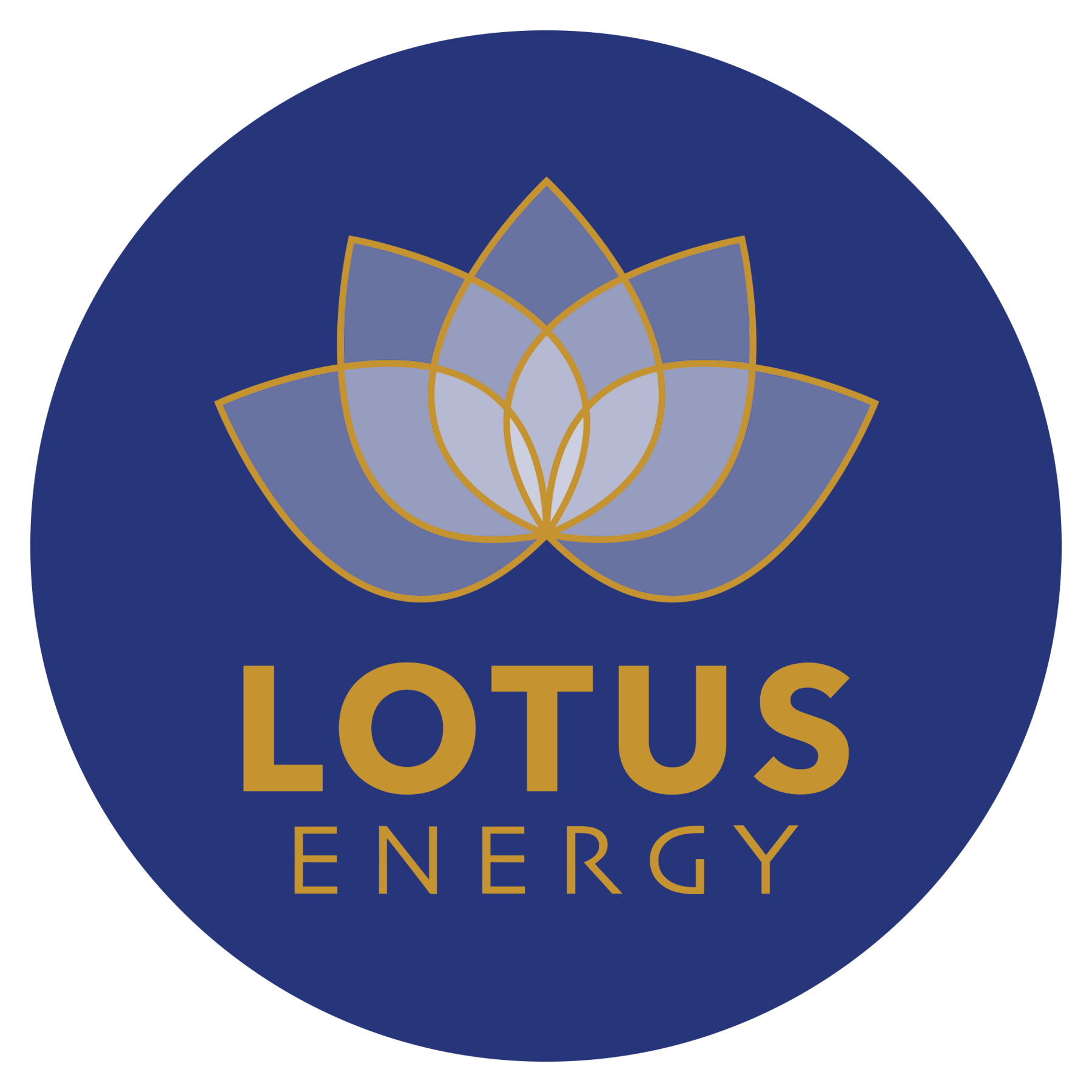 Anthony Vippond Ceo Of Lotus Energy Is Bringing Disruptive Technology To The Renewable Energy Sector Disruptive Technology Energy Sector Energy Projects