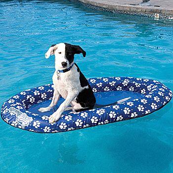 New Dog Pool Float Mans Best Friends Heavy Duty Flotation Device